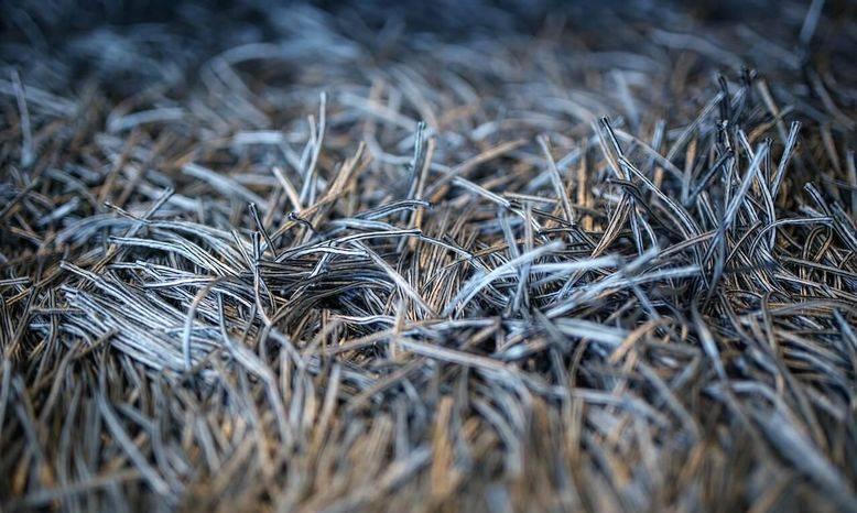 Brisas Carpet Care